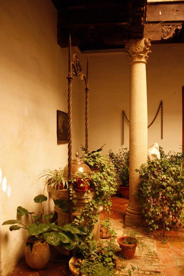 casamuseo (7)