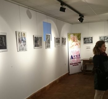 Exposición ASV 1-min